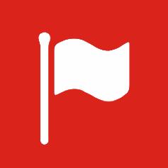 3.13 Flag